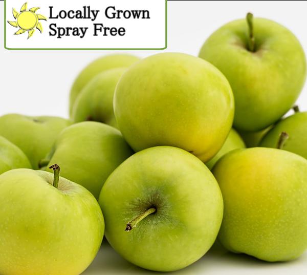Apples granny smith Spray Free