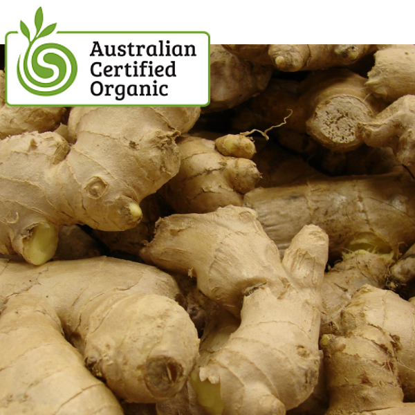Organic Ginger Root Whole Foods